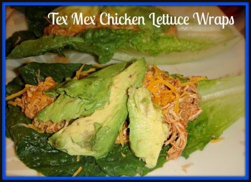 tex mex chx let wrap