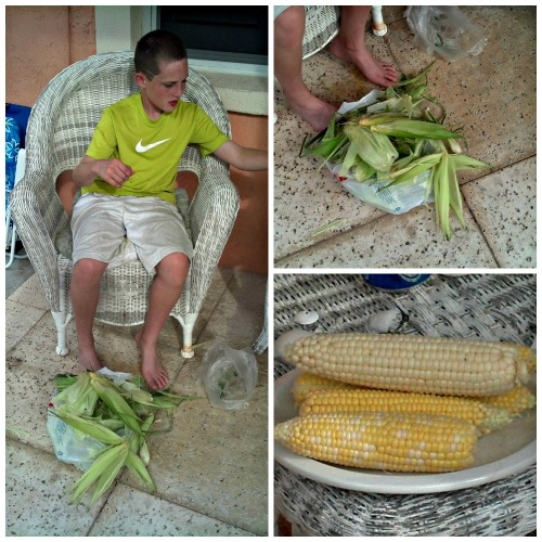 alec and corn collage